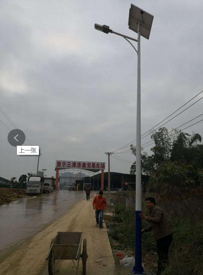 南宁三津活禽市场